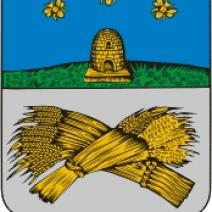 День города Шацк