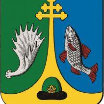 г. Спас-Клепики – День поселка
