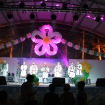 Аверкинский фестиваль г. Сасово